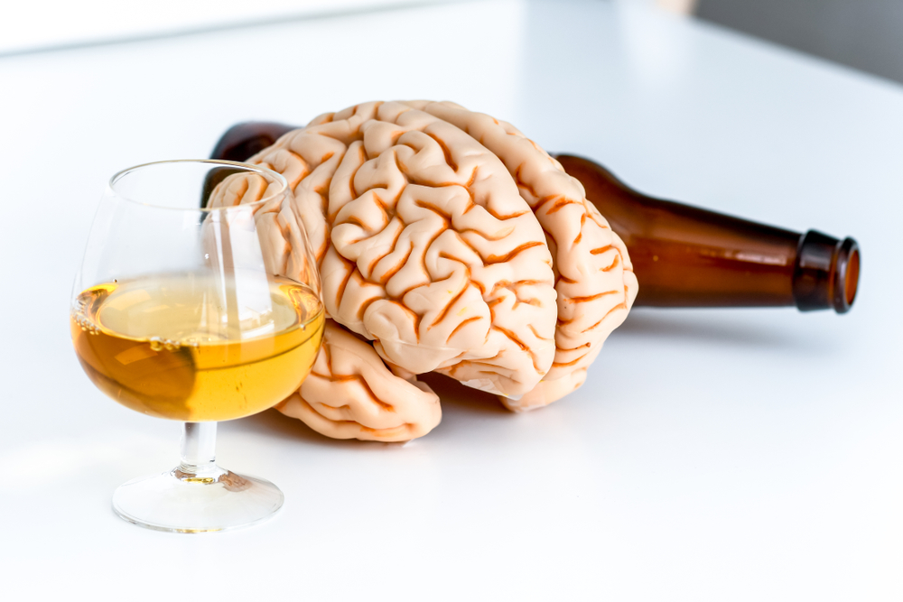 Alcohol changing the brain